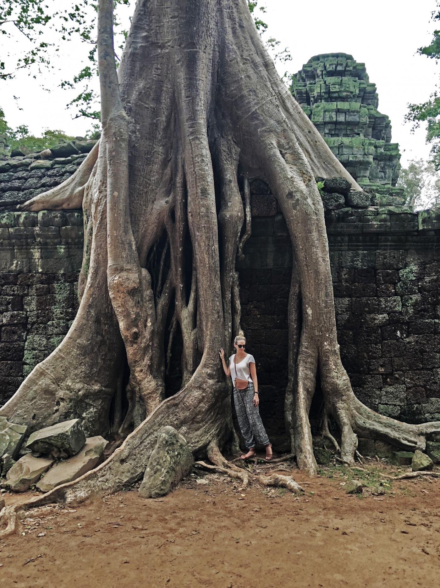 Ta Prohm Temple in Siem Riep Province, Cambodia