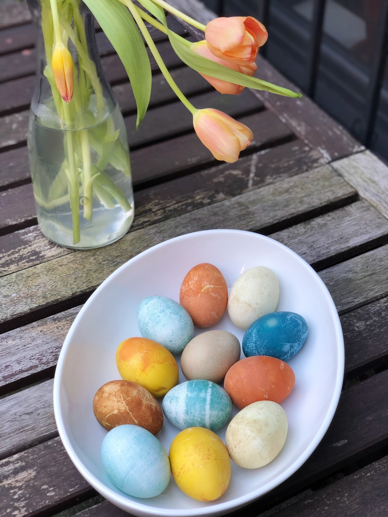 Easter eggs naturally dyed from vegetables on a table with Spring tulips